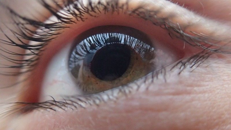 Glaucoma in the Elderly